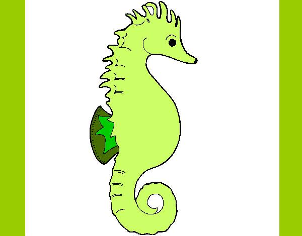 Desenho De Cavalo Marinho Verde Pintado E Colorido Por Laila O Dia