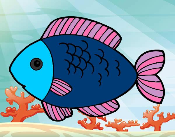 Desenho De Peixinho Pintado E Colorido Por Alex O Dia 21 De Abril