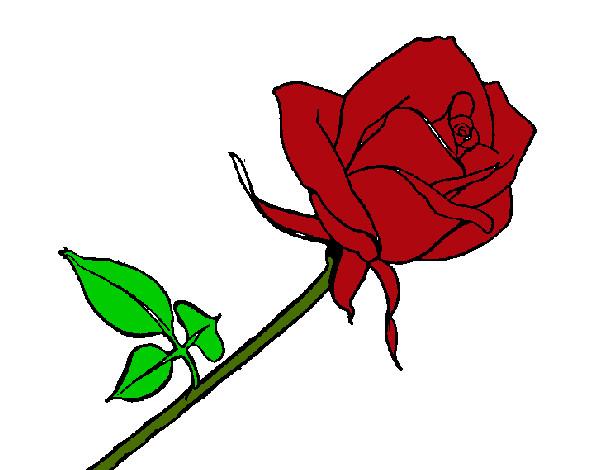 Desenho De Rosa Vermelha Pintado E Colorido Por Francy O Dia 09 De