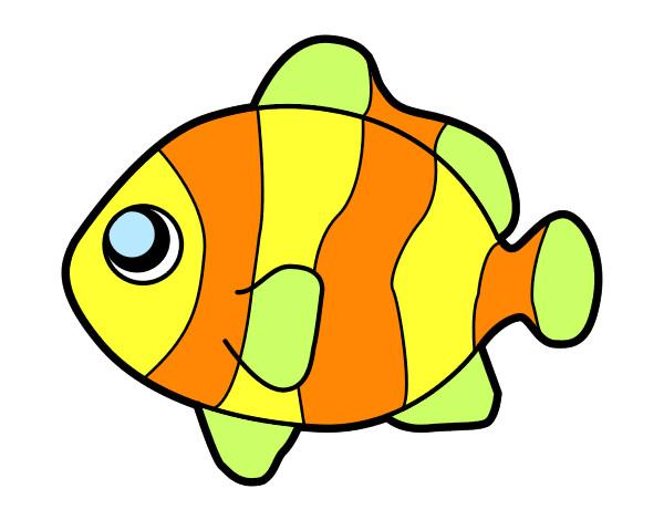 Desenho De Peixe Imagui