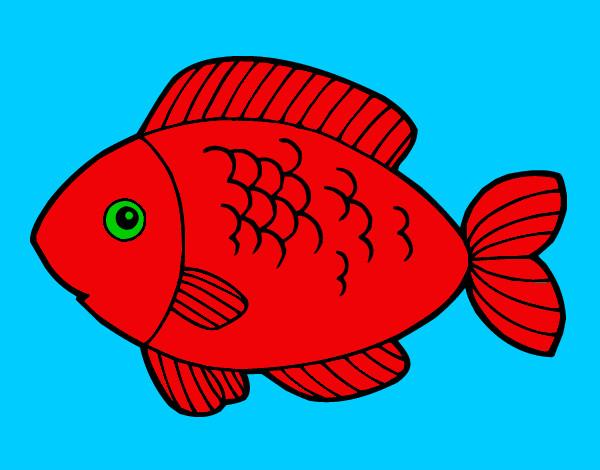 Desenho De Peixe Para Comer Pintado E Colorido Por Lucasa O Dia 22