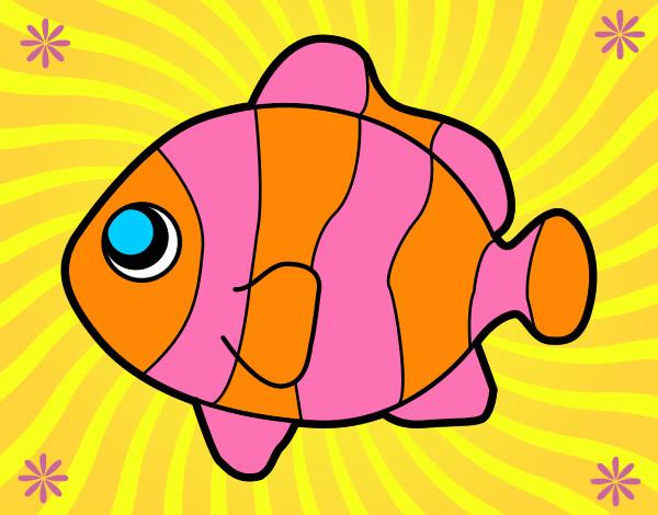 Desenho De Peixinho Divertido Pintado E Colorido Por Rafaelagiu O