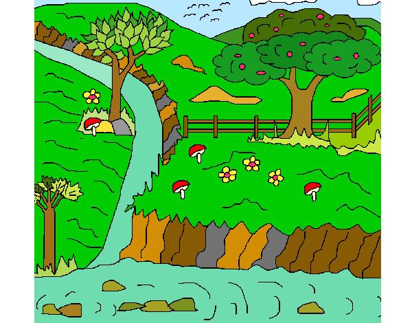 Desenho De Paisagem Rural Pintado E Colorido Por Aposentada O Dia