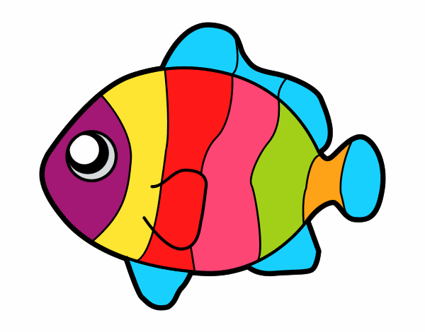 Desenhos De Peixes Para Imprimir Coloridos