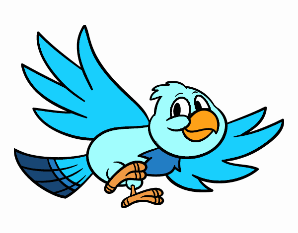 Passarinho Desenho Voando