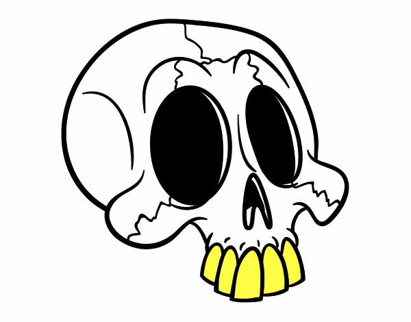 Desenho De Cranio Pintado E Colorido Por Sombria O Dia 07 De