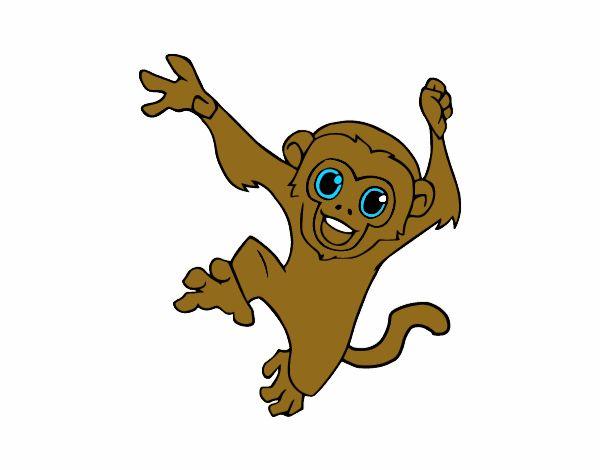 Desenho De Macaco Prego Bebe Pintado E Colorido Por Usuario Nao