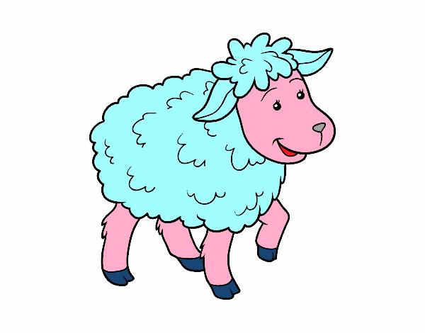 Desenho De Ovelha Comum Pintado E Colorido Por Usuario Nao