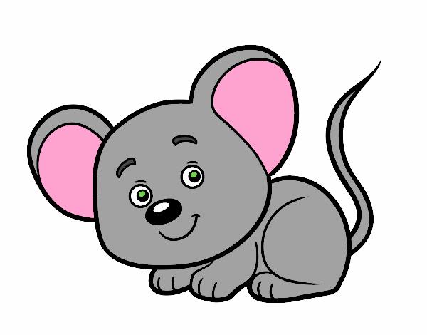 Desenho De Animais Fofinhos Pintado E Colorido Por Usuario Nao