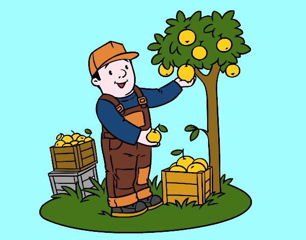 Desenho De Um Fazendeiro Pintado E Colorido Por Usuario Nao