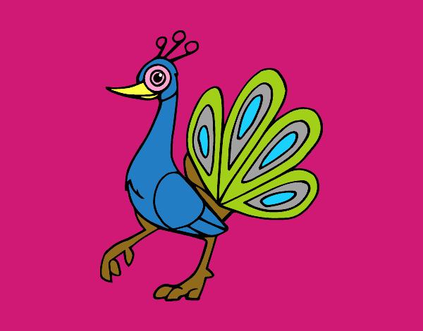 Desenho De Pavao Indiano Pintado E Colorido Por Usuario Nao
