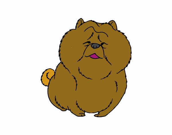 Desenho De Chow Chow Pintado E Colorido Por Usuario Nao Registrado