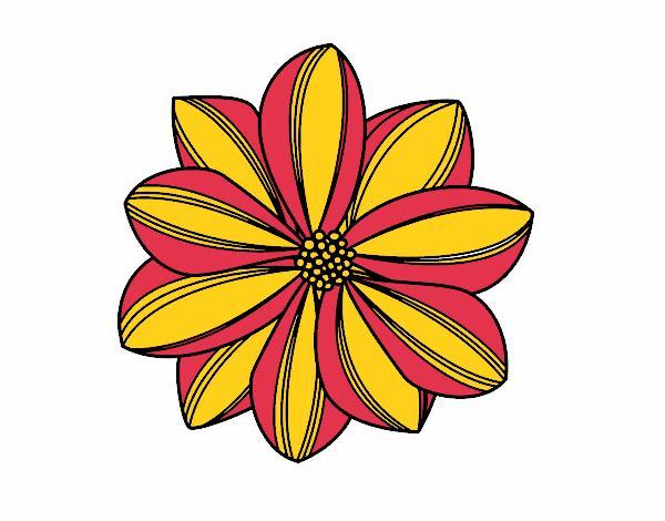 Desenho De Flor De Margarida Pintado E Colorido Por Usuario Nao