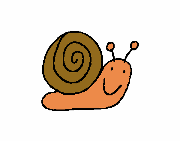 Caracol 4