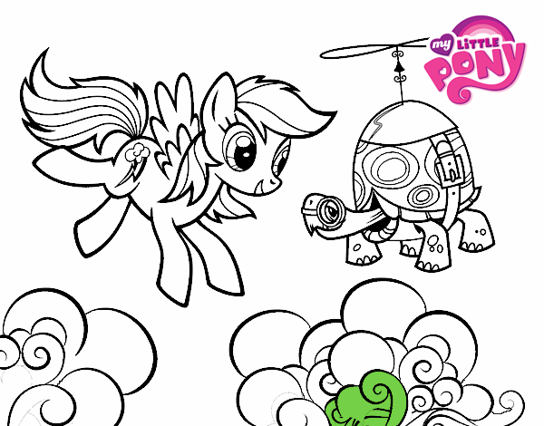 Rainbow Dash and Tank Turtle