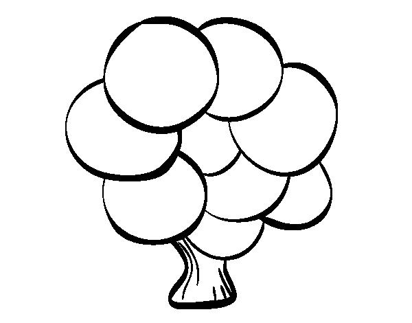 desenho de Árvore com folhas redondas para colorir colorir com