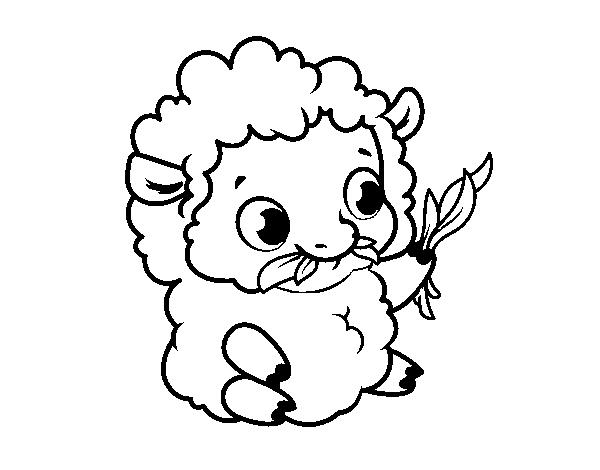 desenho de bebê ovelha para colorir colorir com