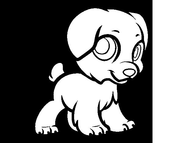 desenho de cachorro feliz para colorir colorir com