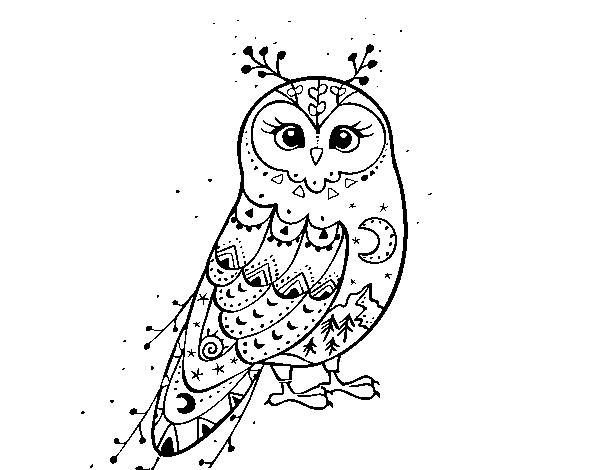 Desenho De Coruja Do Inverno Para Colorir Colorircom