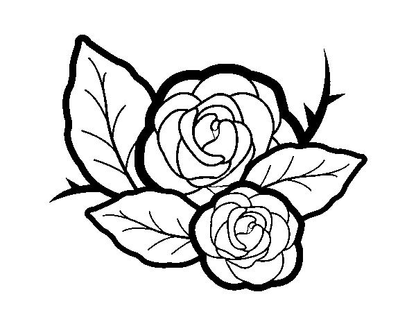 Desenho De Duas Rosas Para Colorir Colorir Com