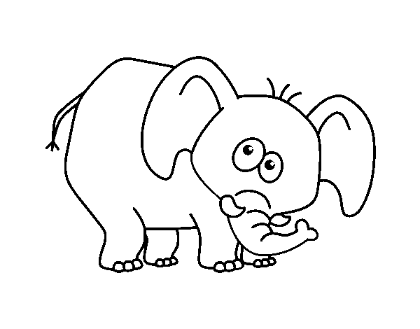 desenho de elefante envergonhado para colorir colorir com