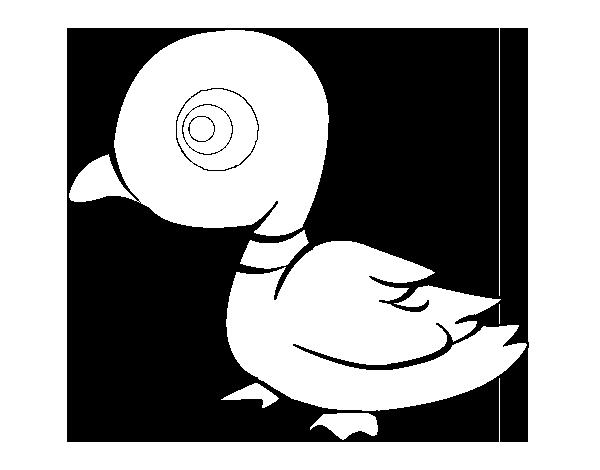 Desenho De Pato De Rio Para Colorir