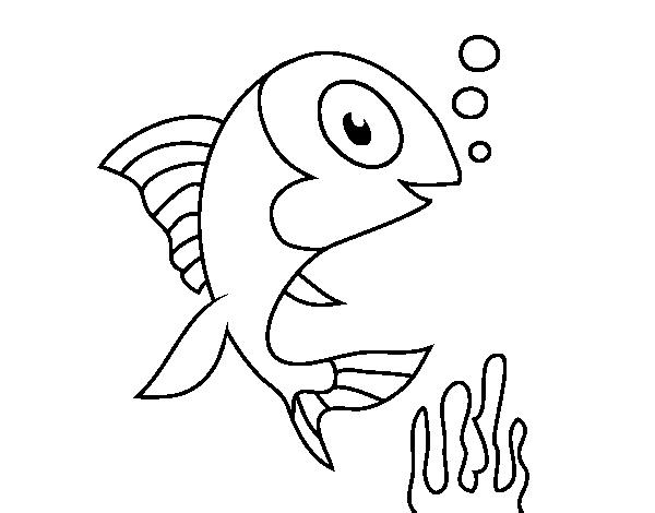Desenho De Peixe De Mar Para Colorir