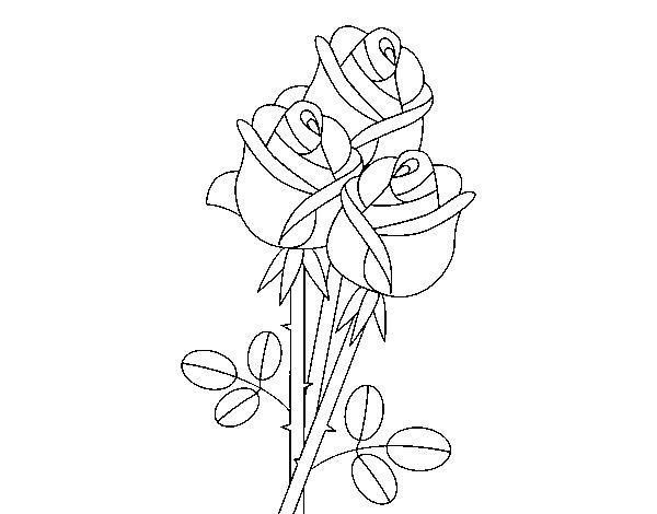 Desenho De Um Buquê De Rosas Para Colorir Colorircom