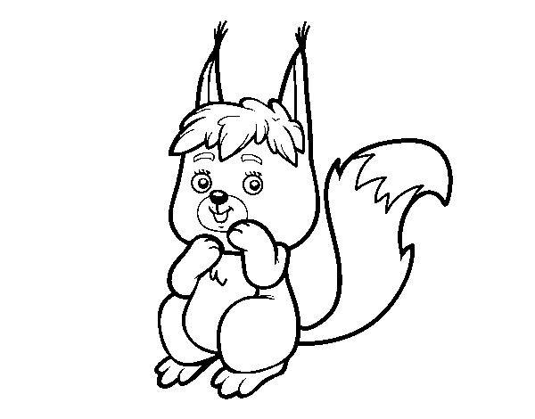 Desenho De Um Pequeno Esquilo Para Colorir Colorir Com