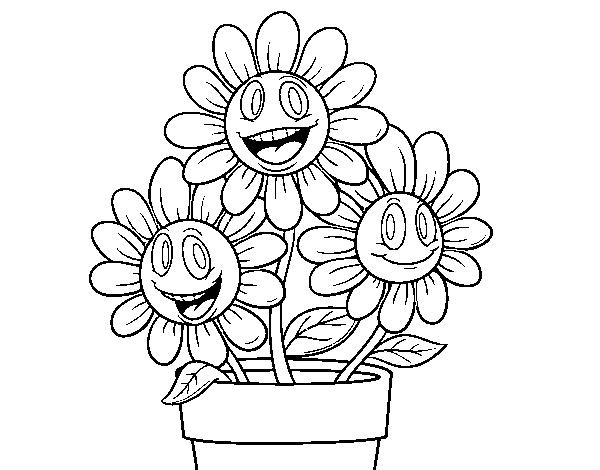 desenho de vaso de flores para colorir colorir com